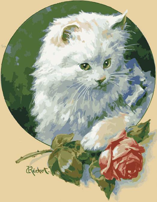 «Белая кошка» Карла РайхертаЦветной (Premium)<br><br><br>Артикул: MG3002_Z<br>Основа: Холст<br>Сложность: сложные<br>Размер: 40x50 см<br>Количество цветов: 25<br>Техника рисования: Без смешивания красок