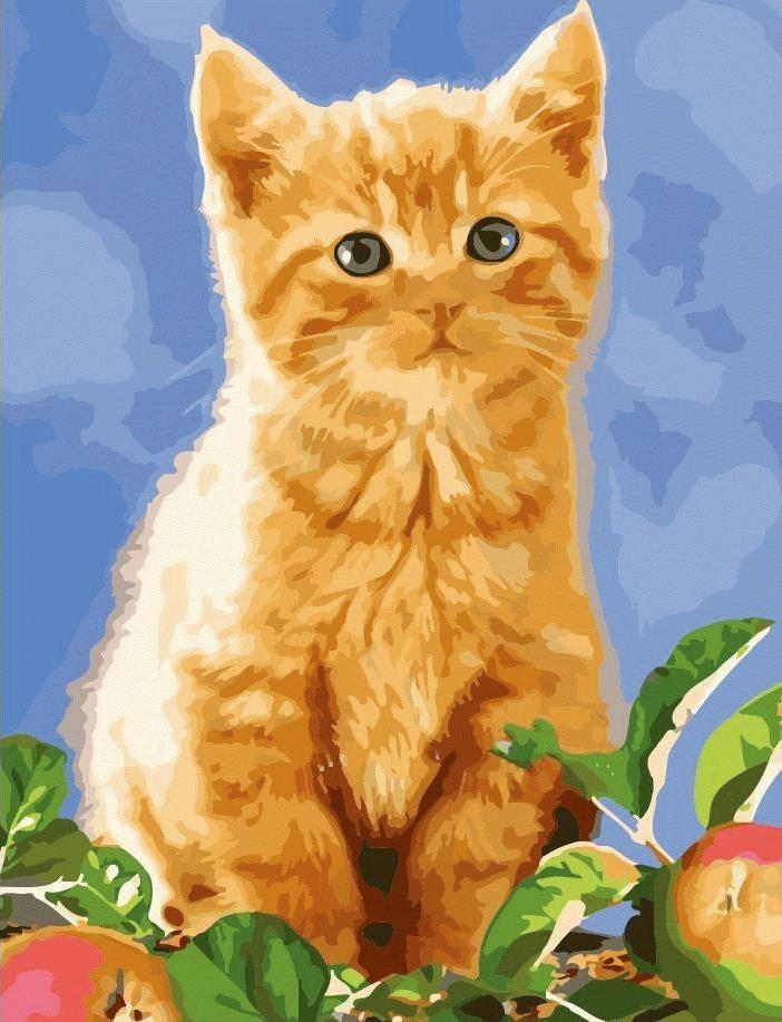 Картина по номерам «Рыжик» MMC074 Menglei (Premium) 50x65 ...