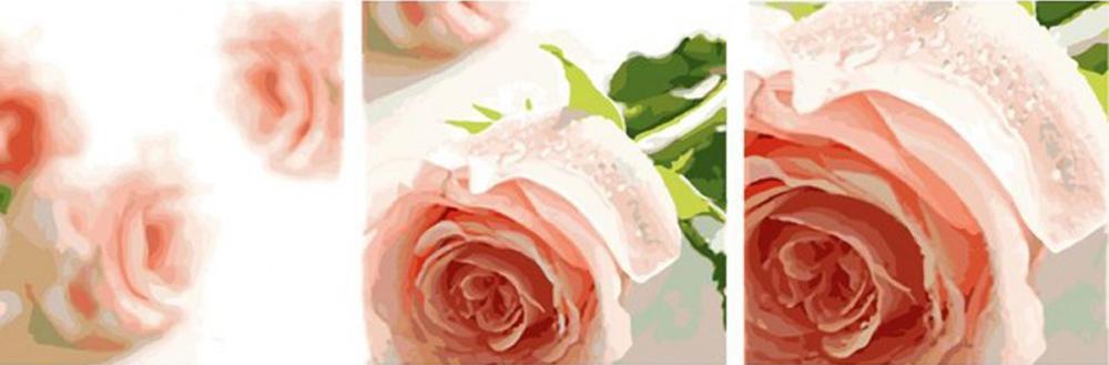 «Розовые розы»Цветной (Premium)<br><br><br>Артикул: MT3061_Z<br>Основа: Холст<br>Сложность: очень сложные<br>Размер: 3 шт. 50x50 см<br>Количество цветов: 25<br>Техника рисования: Без смешивания красок