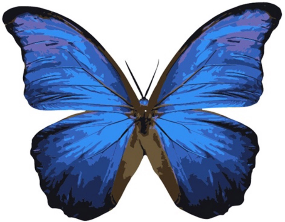 «Бабочка Морфо»Цветной (Premium)<br><br><br>Артикул: MC1004_Z<br>Основа: Холст<br>Сложность: легкие<br>Размер: 20x30<br>Количество цветов: 9<br>Техника рисования: Без смешивания красок