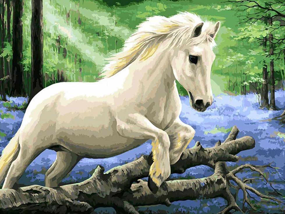 Картина по номерам «В лесу диких гиацинтов» Ирины Гармашовой