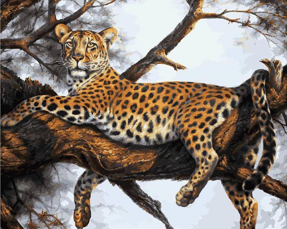 Картина по номерам «Леопард на отдыхе» Сергея МинаеваКартины по номерам Белоснежка<br><br><br>Артикул: 170-AB<br>Основа: Холст<br>Сложность: очень сложные<br>Размер: 40x50 см<br>Количество цветов: 32<br>Техника рисования: Без смешивания красок