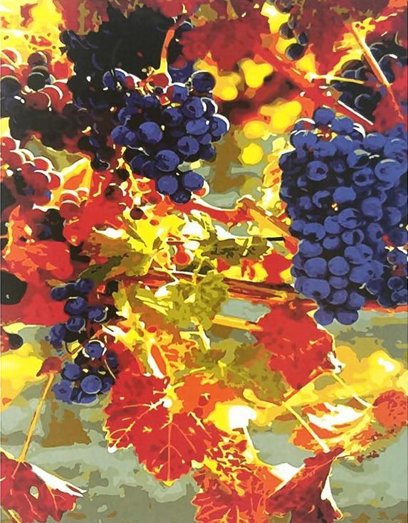 «Синий виноград»Paintboy (Premium)<br><br><br>Артикул: GX8677<br>Основа: Холст<br>Сложность: средние<br>Размер: 40x50 см<br>Количество цветов: 26<br>Техника рисования: Без смешивания красок