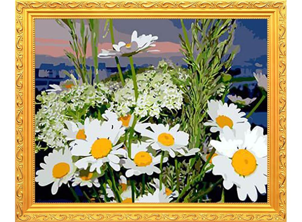 Цветы россии все о ромашке