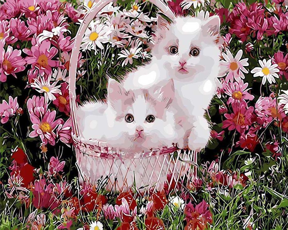 «Котята в корзинке»Paintboy (Premium)<br><br><br>Артикул: GX9160<br>Основа: Холст<br>Сложность: средние<br>Размер: 40x50 см<br>Количество цветов: 24<br>Техника рисования: Без смешивания красок