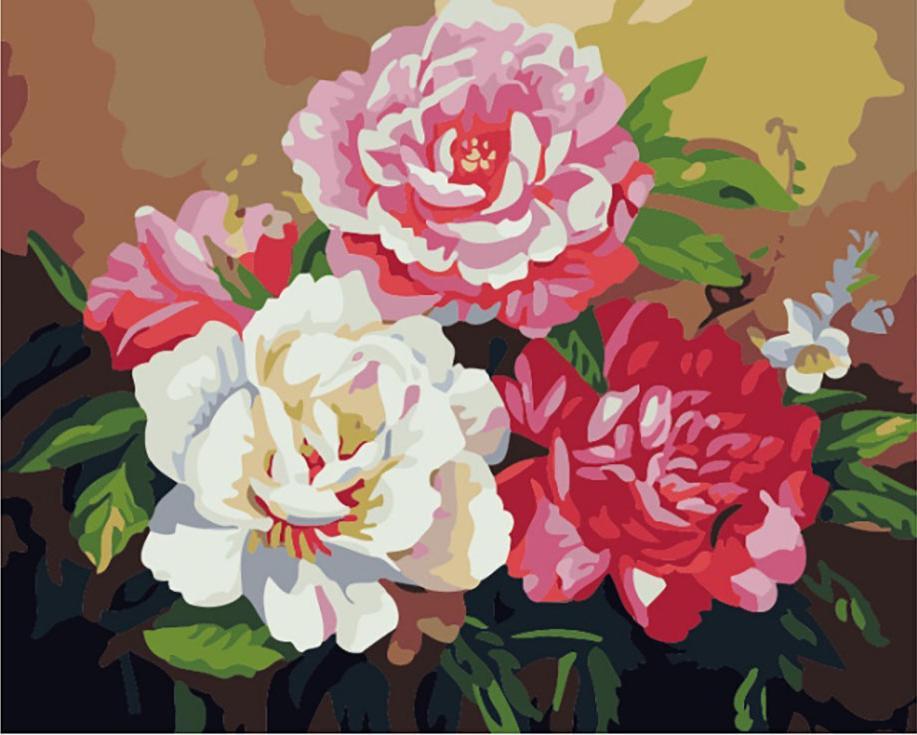 «Восхитительные пионы»Цветной (Premium)<br><br><br>Артикул: MG656_Z<br>Основа: Холст<br>Сложность: сложные<br>Размер: 40x50 см<br>Количество цветов: 25<br>Техника рисования: Без смешивания красок