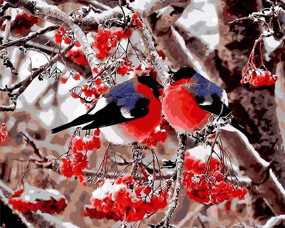 Картина по номерам «Снегири»Раскраски по номерам<br><br>