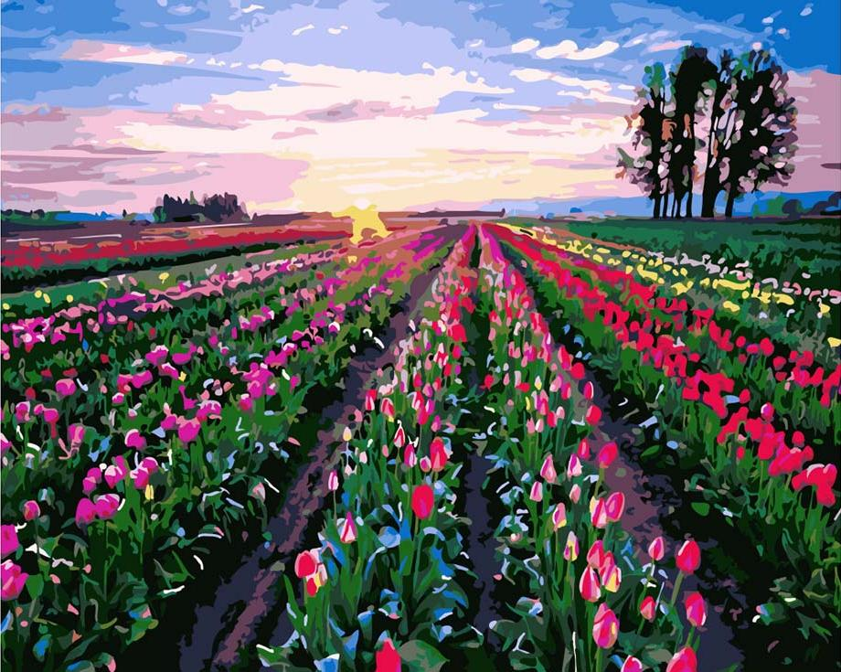 Картина по номерам «Поле тюльпанов»Раскраски по номерам<br><br>