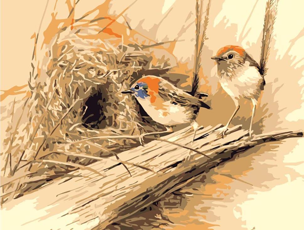 «Райские птицы» Эрика ШепердаЦветной (Premium)<br><br><br>Артикул: MC1012_Z<br>Основа: Холст<br>Сложность: легкие<br>Размер: 20x30 см<br>Количество цветов: 25<br>Техника рисования: Без смешивания красок