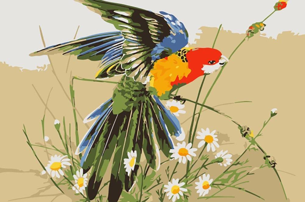 «Попугай в полевых цветах» Эрика ШепердаЦветной (Premium)<br><br><br>Артикул: MC1013_Z<br>Основа: Холст<br>Сложность: легкие<br>Размер: 20x30 см<br>Количество цветов: 25<br>Техника рисования: Без смешивания красок