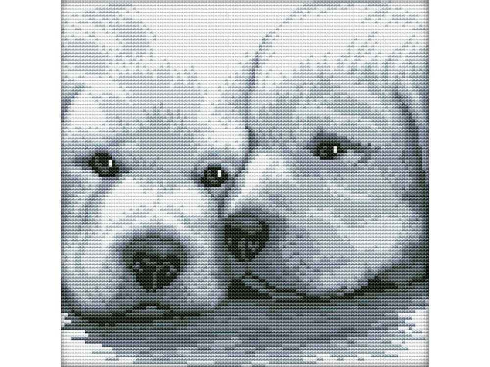 Набор для вышивания «Два белых щенка»Белоснежка<br><br><br>Артикул: 2170-14<br>Основа: канва Aida 14<br>Размер: 28x28 см<br>Техника вышивки: счетный крест<br>Тип схемы вышивки: Цветная схема<br>Цвет канвы: Белый<br>Количество цветов: 8<br>Рисунок на канве: не нанесён<br>Техника: Вышивка крестом