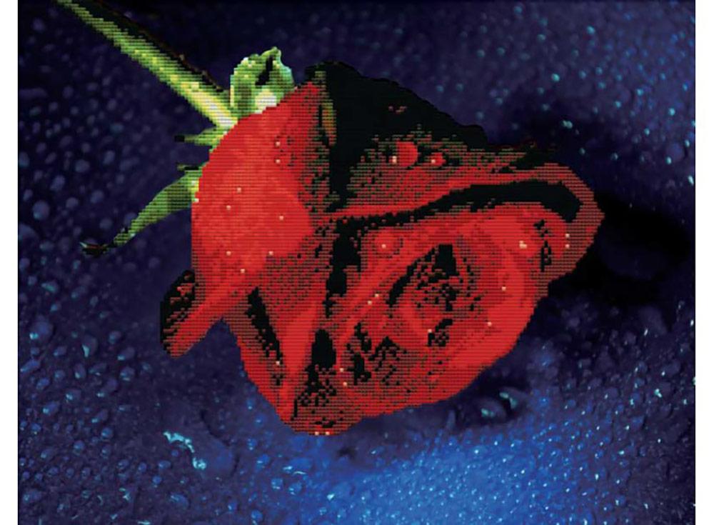 Набор для вышивания «Прекрасная роза»Белоснежка<br><br><br>Артикул: 7003-3D<br>Основа: канва Aida 11<br>Размер: 48x38 см<br>Техника вышивки: несчетный крест<br>Тип схемы вышивки: Цветная схема<br>Рисунок на канве: нанесён рисунок и схема<br>Техника: Вышивка крестом