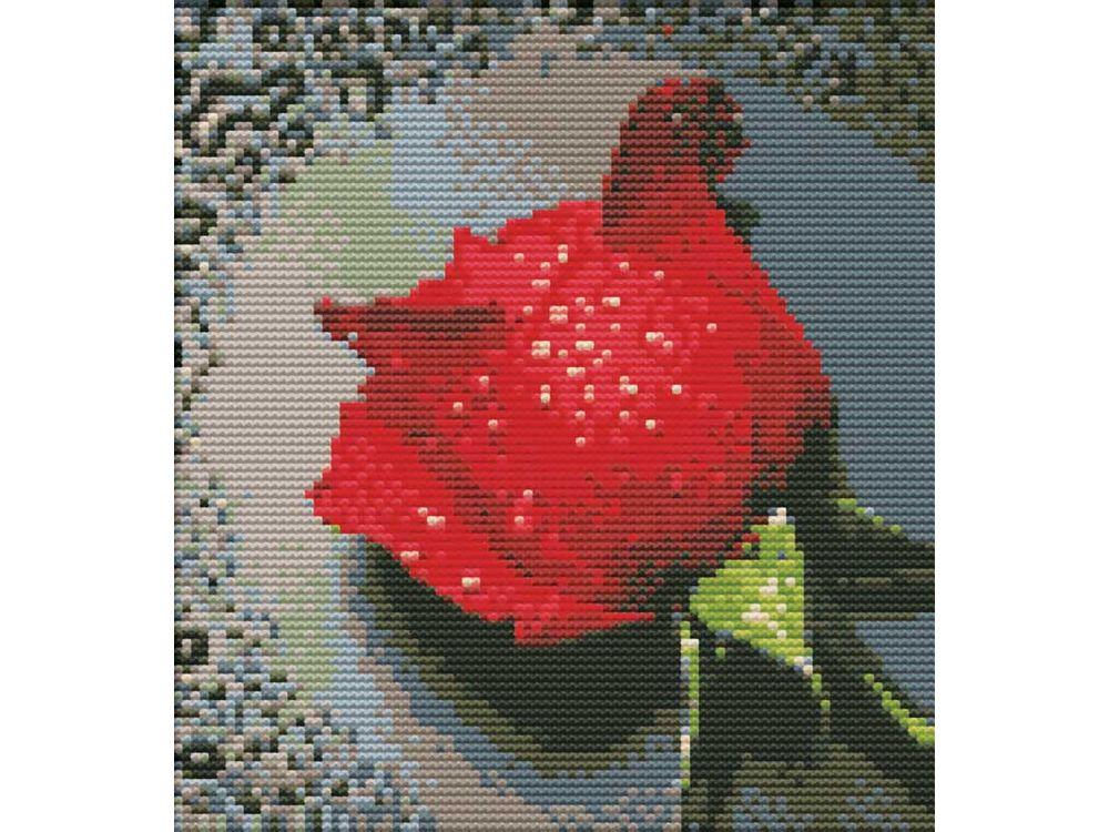 Набор для вышивания «Красный бутон»Белоснежка<br><br><br>Артикул: 7505-РК<br>Основа: канва Aida 11<br>Размер: 28x29 см<br>Техника вышивки: несчетный крест<br>Тип схемы вышивки: Цветная схема<br>Рисунок на канве: нанесён водорастворимый рисунок<br>Техника: Вышивка крестом