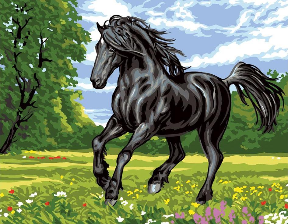 «Черный конь»Цветной (Standart)<br><br><br>Артикул: EX5267_Z<br>Основа: Холст<br>Сложность: сложные<br>Размер: 30x40 см<br>Количество цветов: 25<br>Техника рисования: Без смешивания красок