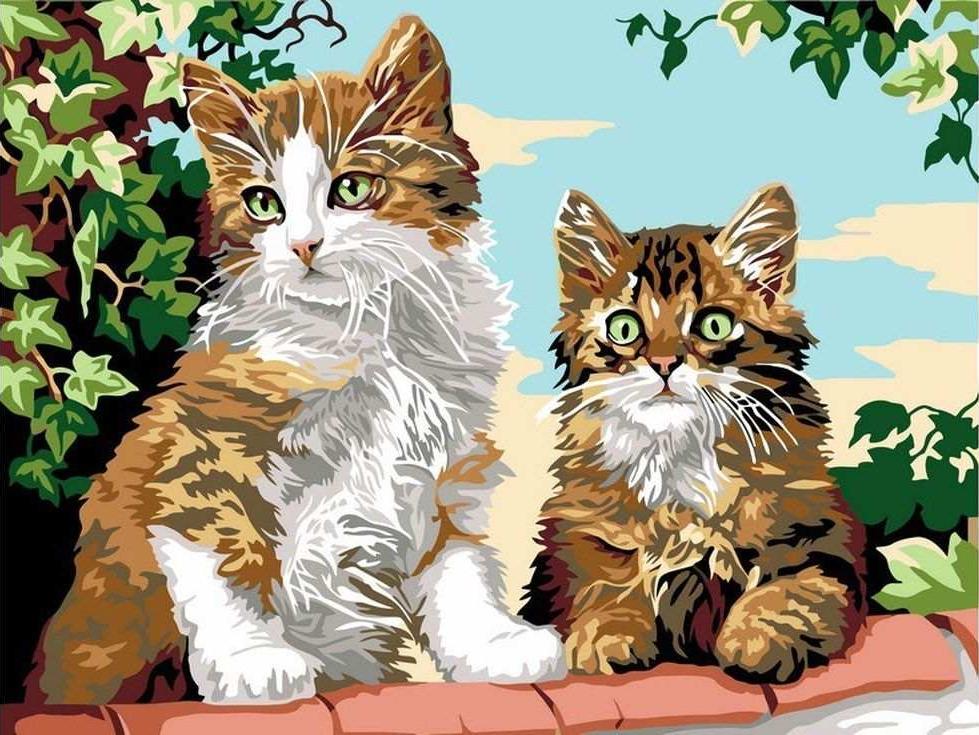 «Котята на заборе»Цветной (Standart)<br><br><br>Артикул: EX5277_Z<br>Основа: Холст<br>Сложность: сложные<br>Размер: 30x40 см<br>Количество цветов: 25<br>Техника рисования: Без смешивания красок