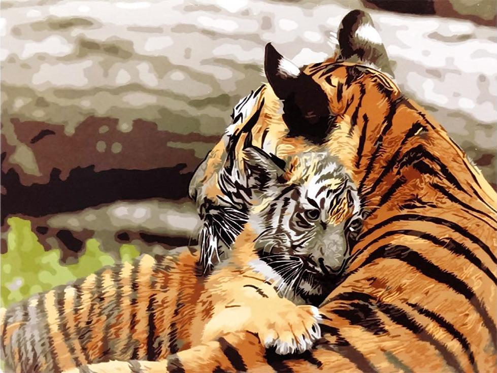 «Тигрица с тигренком»Paintboy (Premium)<br><br><br>Артикул: EX5369<br>Основа: Холст<br>Сложность: средние<br>Размер: 30x40 см<br>Количество цветов: 20<br>Техника рисования: Без смешивания красок