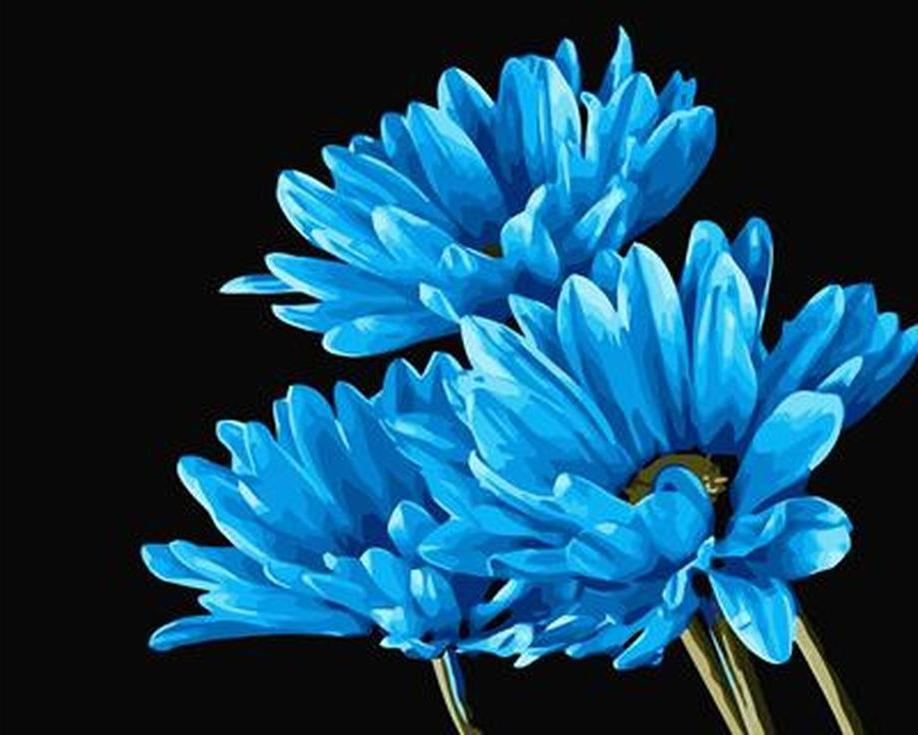 «Великолепна синева»Цветной (Standart)<br><br><br>Артикул: GX6666_Z<br>Основа: Холст<br>Сложность: сложные<br>Размер: 40x50 см<br>Количество цветов: 25<br>Техника рисовани: Без смешивани красок