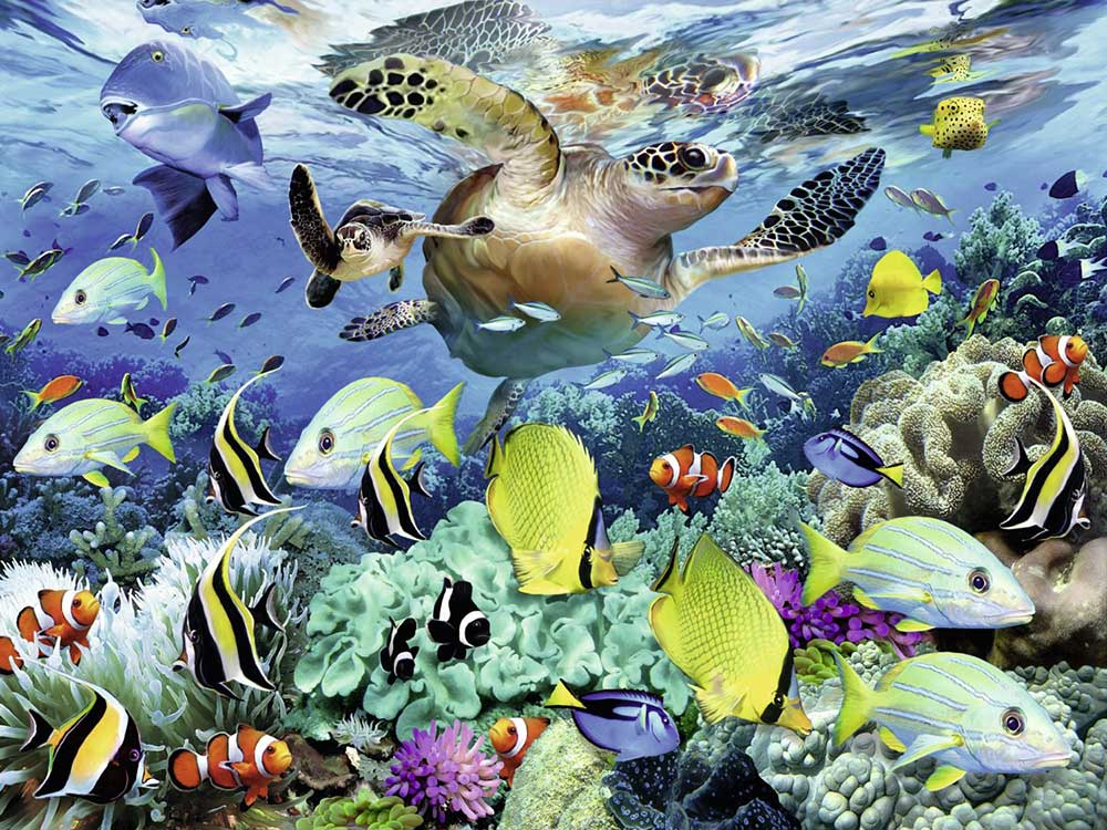 Пазл «Коралловый риф»