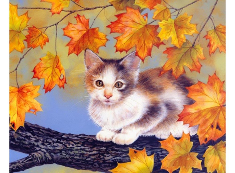 Набор вышивки бисером «Котёнок на дереве»Color KIT<br><br><br>Артикул: 541<br>Основа: ткань<br>Сложность: легкие<br>Размер: 27x35 см<br>Техника вышивки: бисер<br>Количество цветов: 10-15<br>Заполнение: Частичное<br>Рисунок на канве: нанесена схема<br>Техника: Вышивка бисером