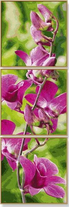 """Картина по номерам «Веточка орхидеи»Schipper (Шиппер)<br>Производитель наборов картин по номерам """"Schipper"""" - это исключительное качество всех составляющих. Особенностью этого бренда является то, что основа картины - высококачественный картон, покрытие которого имитирует натуральный холст. Краски """"Schipper"""" обл...<br>"""