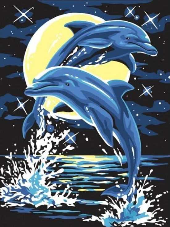Картина по номерам «Лунные дельфины»Раскраски по номерам Color Kit<br><br><br>Артикул: CE107<br>Основа: Холст<br>Сложность: сложные<br>Размер: 30x40 см<br>Количество цветов: 8<br>Техника рисования: Без смешивания красок