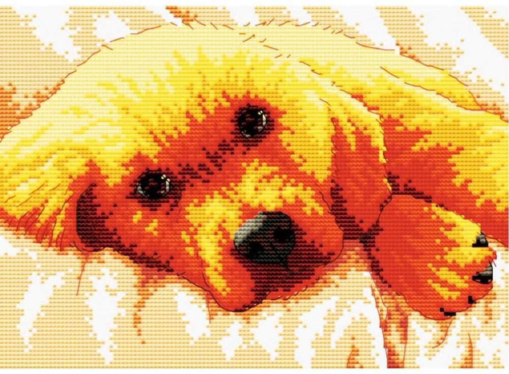 Набор для вышивания «Маленький друг»Белоснежка<br><br><br>Артикул: B-812<br>Основа: канва Aida 14<br>Сложность: сложные<br>Размер: 33x26,3 см<br>Техника вышивки: счетный крест<br>Тип схемы вышивки: Цветная схема<br>Цвет канвы: Белый<br>Количество цветов: 15<br>Рисунок на канве: не нанесён<br>Техника: Вышивка крестом