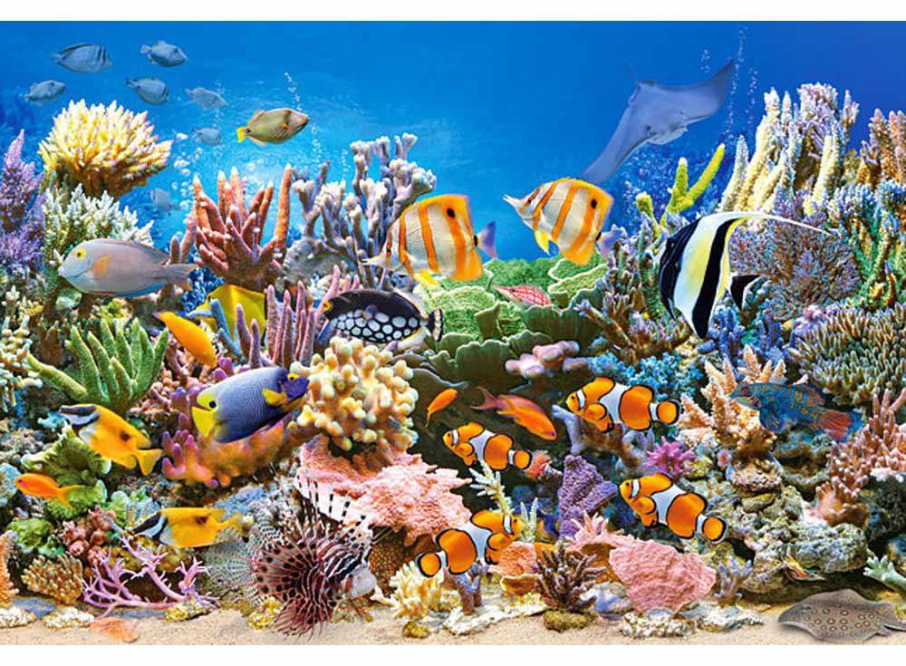 Пазлы «Цвета океана»Пазлы от производителя Castorland<br><br><br>Артикул: B27279<br>Размер: 32x23 см