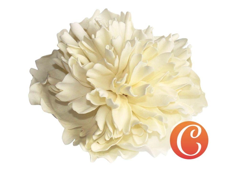 Набор фоамирана «Огюст. Пион»Наборы фоамирана<br>Фоамиран - уникальный материал, обладающий пластичностью, запоминающий форму, которую ему придали, на ощупь напоминающий нежную мягкую замшу. Именно из него создают изящные изделия, соперничающие по красоте с настоящими цветами. <br> <br> Наборы фоамирана, ко...<br><br>Артикул: CH.13057<br>Основа: Фоамиран