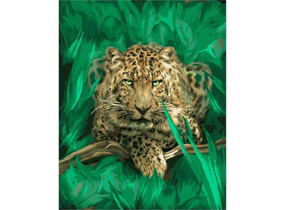 Картина по номерам «Леопард наблюдает»Цветной (Standart)<br><br><br>Артикул: GX7798_Z<br>Основа: Холст<br>Сложность: сложные<br>Размер: 40x50 см<br>Количество цветов: 25<br>Техника рисования: Без смешивания красок