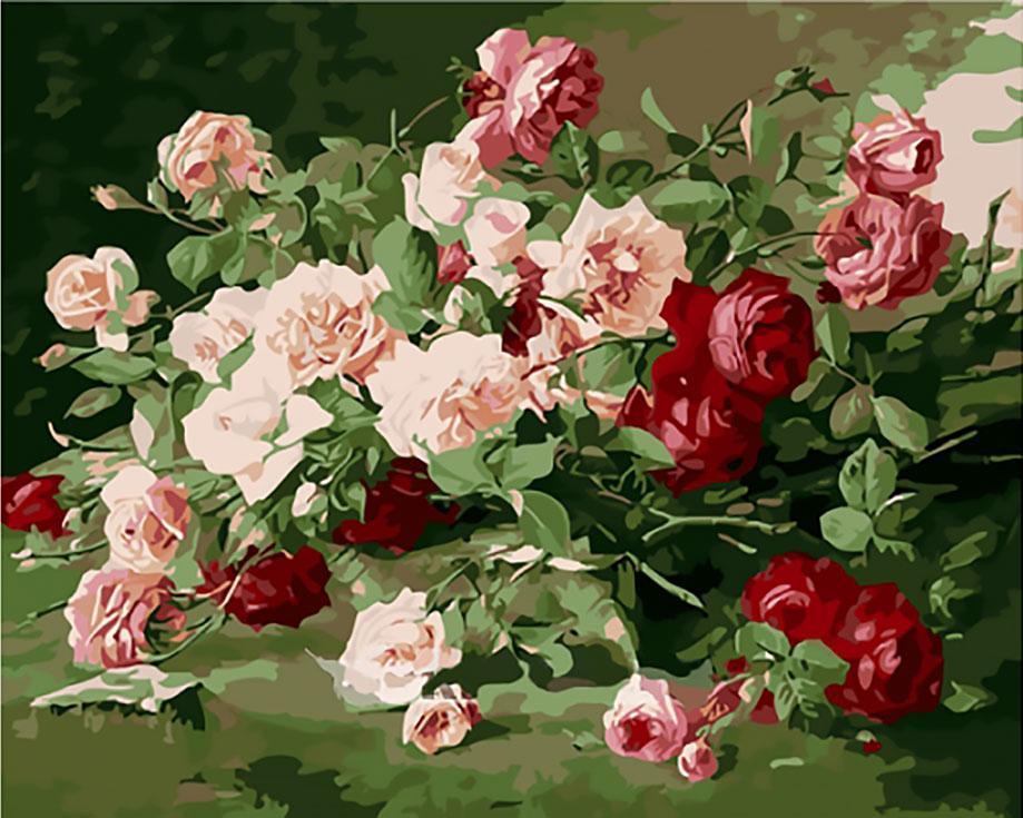 Картина по номерам «Великолепные розы»Menglei (Premium)<br><br><br>Артикул: MG0761<br>Основа: Холст<br>Сложность: сложные<br>Размер: 40x50 см<br>Количество цветов: 24<br>Техника рисования: Без смешивания красок