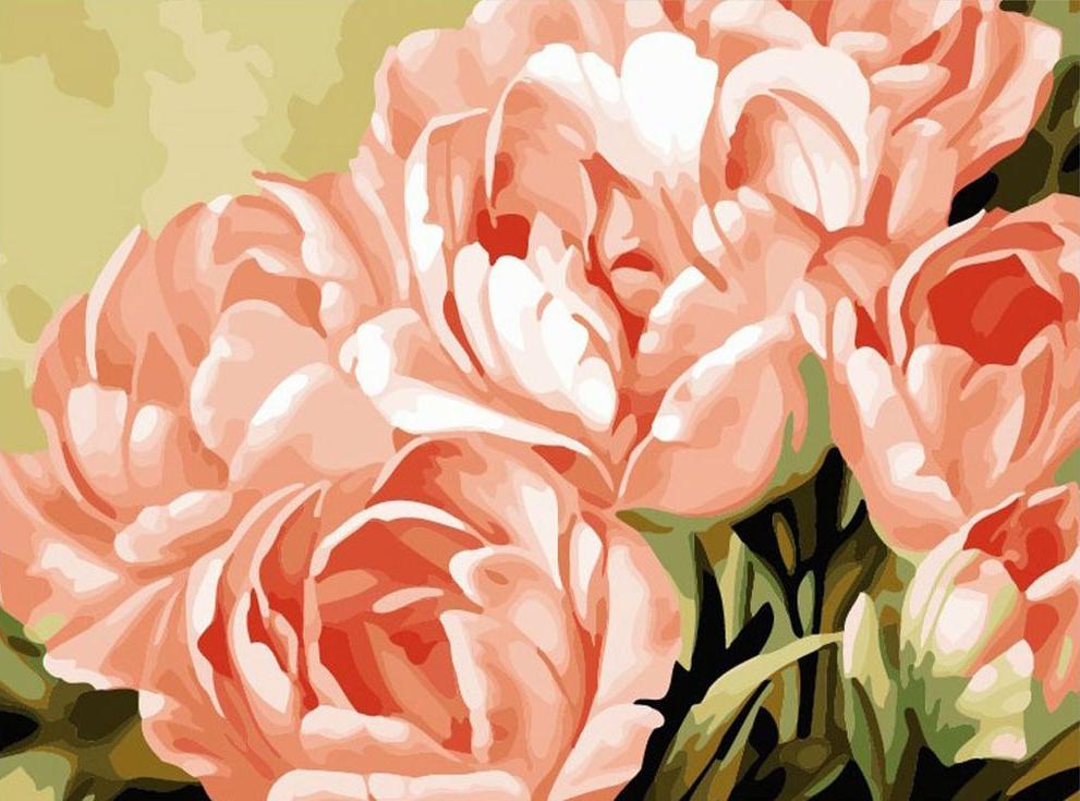 Картина по номерам «Тюльпаны» Игоря ЛевашоваMenglei (Premium)<br><br><br>Артикул: MG757<br>Основа: Холст<br>Сложность: сложные<br>Размер: 40x50 см<br>Количество цветов: 22<br>Техника рисования: Без смешивания красок