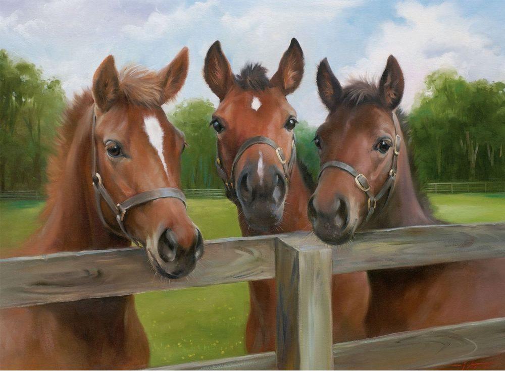 Пазлы «Три лошади»Ravensburger<br><br><br>Артикул: 14566<br>Размер: 49x36 см