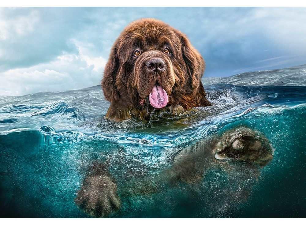 Пазлы «Большой пес»Пазлы от производителя Castorland<br><br><br>Артикул: C103478<br>Размер: 68x47 см