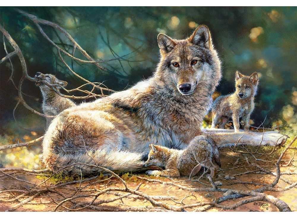 Пазлы «Волки»Пазлы от производителя Castorland<br><br><br>Артикул: C151400<br>Размер: 68x47 см
