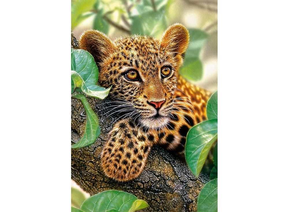 Пазлы «Ягуар на дереве»Пазлы от производителя Castorland<br><br><br>Артикул: C151493<br>Размер: 68x47 см