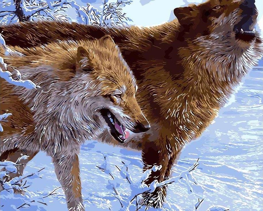 Картина по номерам «Зимние волки»Цветной (Standart)<br><br><br>Артикул: GX3577_Z<br>Основа: Холст<br>Сложность: сложные<br>Размер: 40x50 см<br>Количество цветов: 25<br>Техника рисования: Без смешивания красок