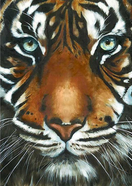 Алмазная вышивка «Взгляд тигра»Алмазная вышивка Гранни<br><br><br>Артикул: Ag247<br>Основа: Холст без подрамника<br>Сложность: средние<br>Размер: 27x38 см<br>Выкладка: Полная<br>Количество цветов: 31<br>Тип страз: Квадратные
