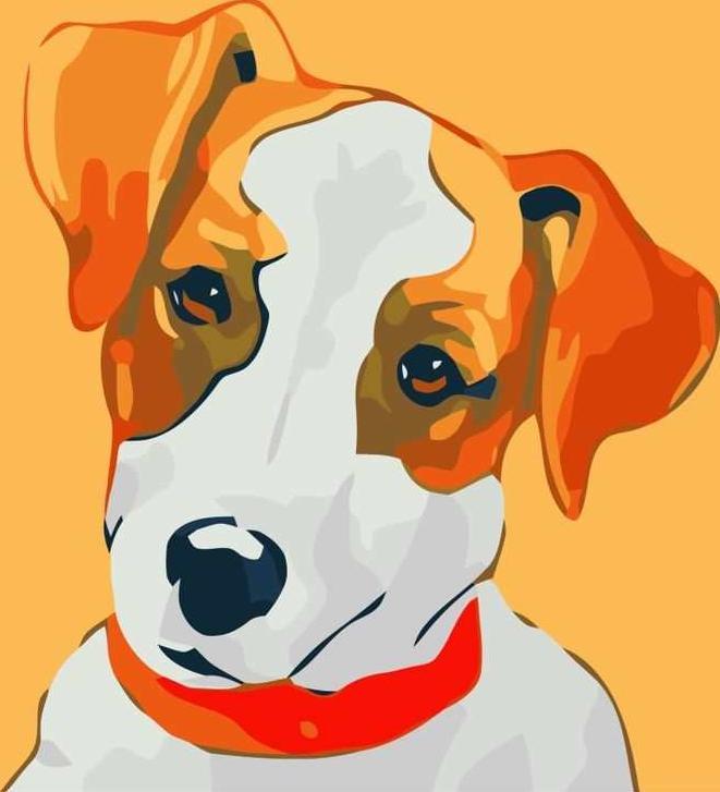 «Джек Рассел Терьер»Раскраски по номерам Paintboy (Original)<br><br><br>Артикул: D048_R<br>Основа: Холст<br>Сложность: легкие<br>Размер: 30x30 см<br>Количество цветов: 13<br>Техника рисования: Без смешивания красок