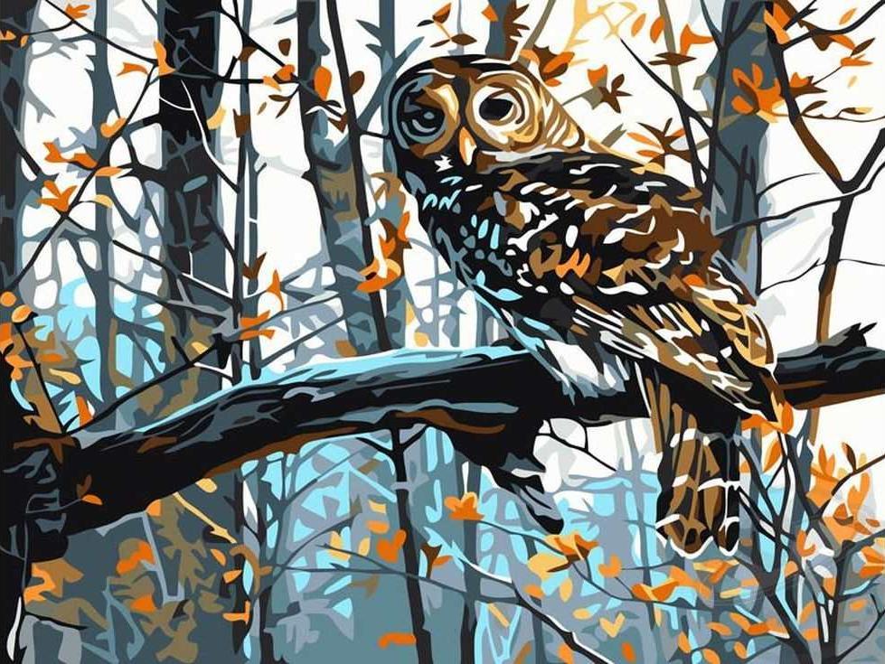«Мудрая сова»Раскраски по номерам Paintboy (Original)<br><br><br>Артикул: EX5021_R<br>Основа: Холст<br>Сложность: легкие<br>Размер: 30x40 см<br>Количество цветов: 16<br>Техника рисования: Без смешивания красок