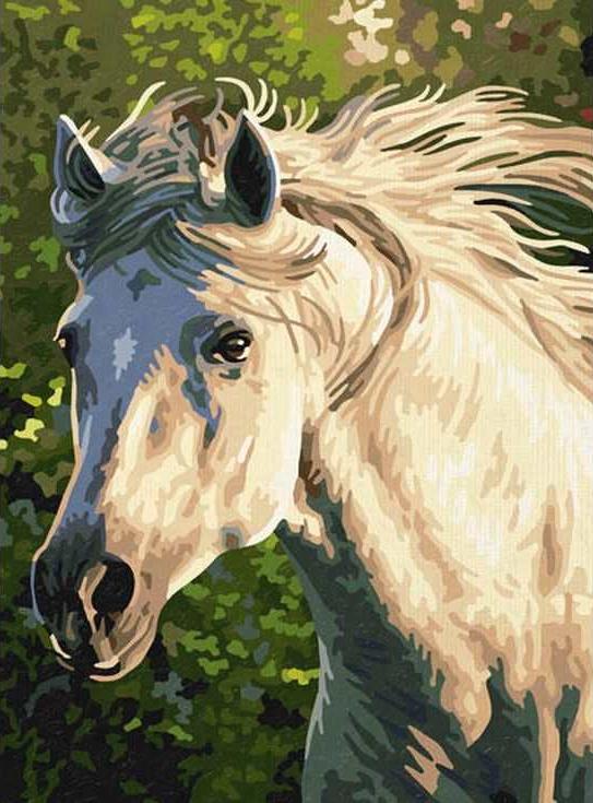 «Белогривая лошадь»Раскраски по номерам Paintboy (Original)<br><br><br>Артикул: EX5077_R<br>Основа: Холст<br>Сложность: легкие<br>Размер: 30x40 см<br>Количество цветов: 19<br>Техника рисования: Без смешивания красок