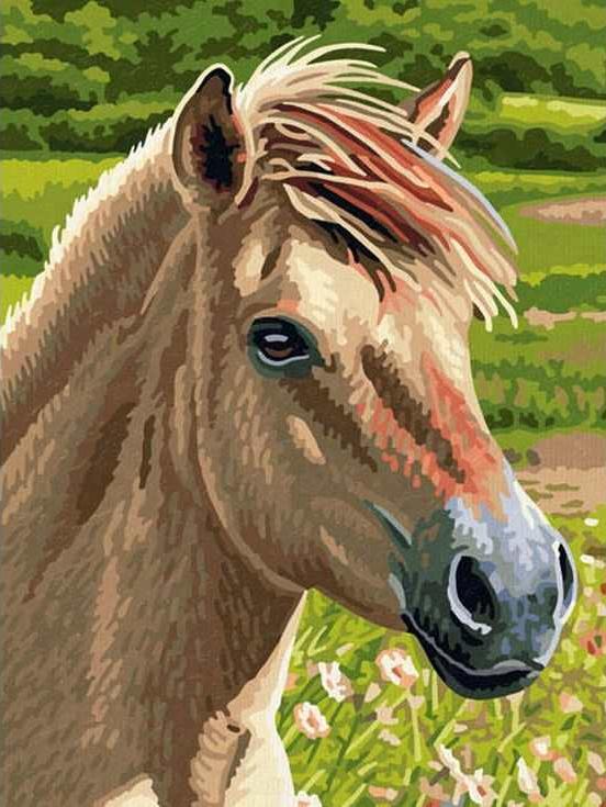 «Лошадка»Paintboy (Premium)<br><br><br>Артикул: EX5078<br>Основа: Холст<br>Сложность: средние<br>Размер: 30x40 см<br>Количество цветов: 24<br>Техника рисования: Без смешивания красок