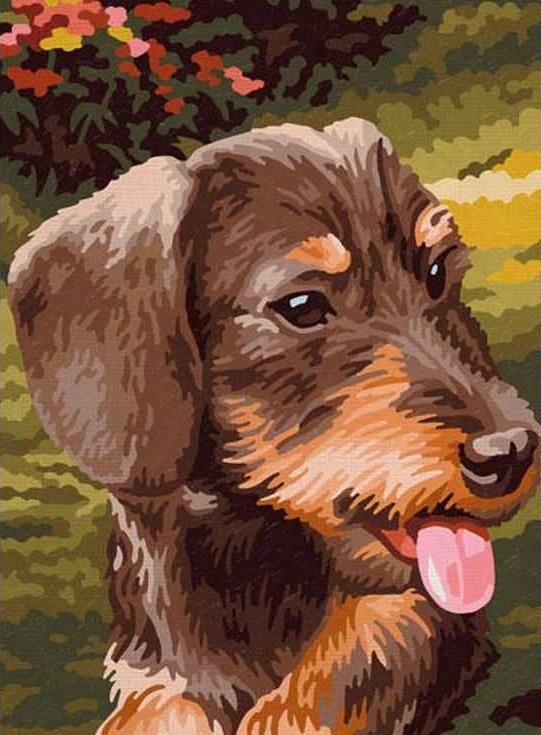 «Добрый пес»Раскраски по номерам Paintboy (Original)<br><br><br>Артикул: EX5086_R<br>Основа: Холст<br>Сложность: средние<br>Размер: 30x40 см<br>Количество цветов: 21<br>Техника рисования: Без смешивания красок