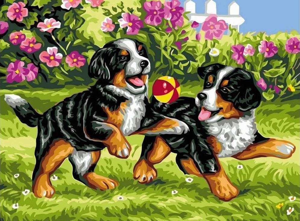 Картина по номерам «Щенки на прогулке»Раскраски по номерам Paintboy (Original)<br><br>