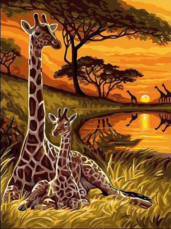 Картина по номерам «Жирафы»Раскраски по номерам Paintboy (Original)<br><br><br>Артикул: EX5287_R<br>Основа: Холст<br>Сложность: средние<br>Размер: 30x40 см<br>Количество цветов: 21<br>Техника рисования: Без смешивания красок