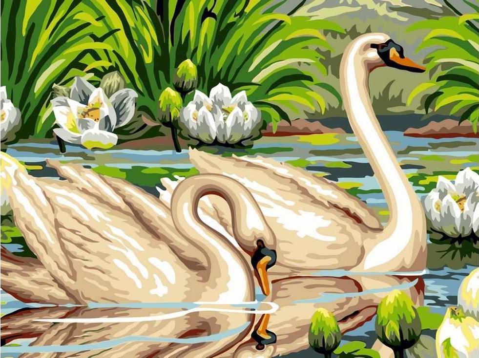 Картина по номерам «Лебеди и лотосы»Раскраски по номерам Paintboy (Original)<br><br><br>Артикул: EX5288_R<br>Основа: Холст<br>Сложность: средние<br>Размер: 30x40 см<br>Количество цветов: 22<br>Техника рисования: Без смешивания красок