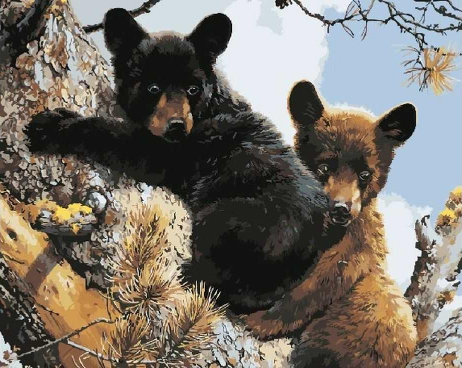«Пара медвежат»Paintboy (Premium)<br><br><br>Артикул: GX3011<br>Основа: Холст<br>Сложность: средние<br>Размер: 40x50 см<br>Количество цветов: 22<br>Техника рисования: Без смешивания красок