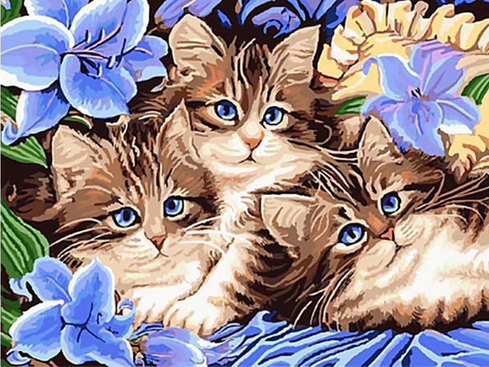 «Котята в цветах»Раскраски по номерам Paintboy (Original)<br><br><br>Артикул: GX3071_R<br>Основа: Холст<br>Сложность: средние<br>Размер: 40x50 см<br>Количество цветов: 23<br>Техника рисования: Без смешивания красок