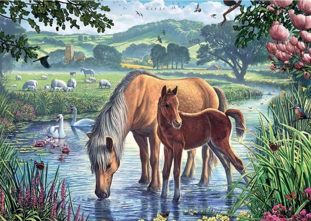 Купить Картина по номерам «На водопое», Paintboy (Original)