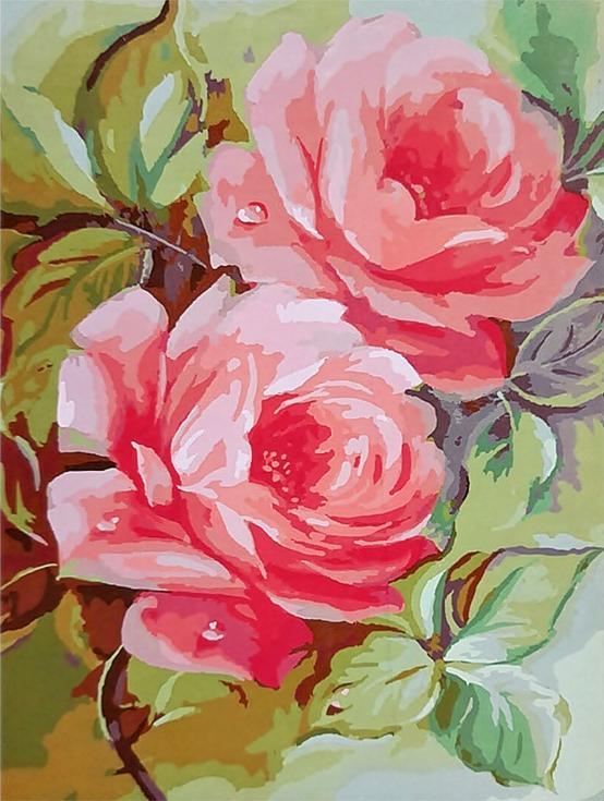 «Розы на ветке» Дугласа ФраскеттиPaintboy (Premium)<br><br><br>Артикул: GX3470<br>Основа: Холст<br>Сложность: сложные<br>Размер: 40x50<br>Количество цветов: 28<br>Техника рисования: Без смешивания красок