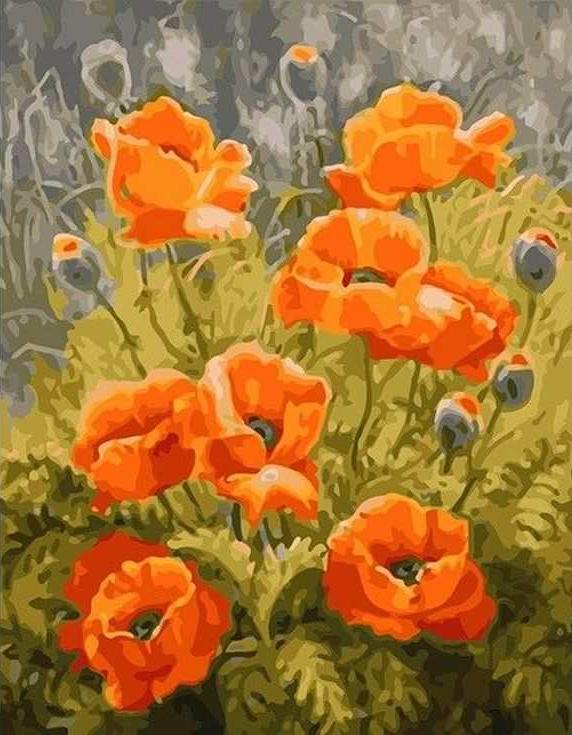 Картина по номерам «Оранжевые маки» Елены ШумаковойPaintboy (Premium)<br><br><br>Артикул: GX6741<br>Основа: Холст<br>Сложность: средние<br>Размер: 40x50 см<br>Количество цветов: 24<br>Техника рисования: Без смешивания красок